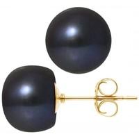 Uhren & Schmuck Damen Ohrringe Blue Pearls BPS K618 W Multicolor