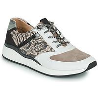 Schuhe Damen Sneaker Low JB Martin 1KALIO Weiss / Beige / Schwarz