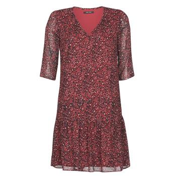 Kleidung Damen Kurze Kleider One Step RINDA Bordeaux