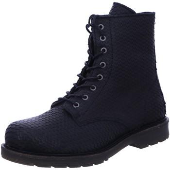 Schuhe Damen Stiefel Apple Of Eden Stiefeletten 9 SUN 1.3 schwarz