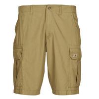 Kleidung Herren Shorts / Bermudas Napapijri NOTO 4 Camel