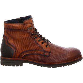 Schuhe Herren Boots Bugatti Schnürstiefelette Kaltfutter Ringo II 321-61833-4141 6163 braun