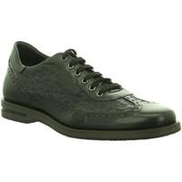 Schuhe Herren Derby-Schuhe Galizio Torresi Schnuerschuhe foulard nero tdm nero 341366 schwarz