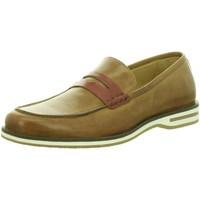Schuhe Herren Slipper Galizio Torresi Slipper cuoio erise 312854-12994 braun