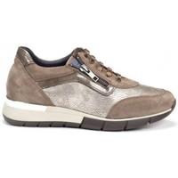 Schuhe Damen Sneaker Low Dorking 24 Hrs mod.8657 Braun