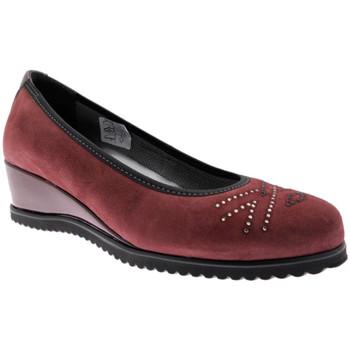 Schuhe Damen Ballerinas Calzaturificio Loren LOX5905bo nero
