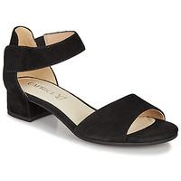 Schuhe Damen Sandalen / Sandaletten Caprice BESSINA Schwarz