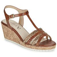 Schuhe Damen Sandalen / Sandaletten Caprice POUDALLE Cognac