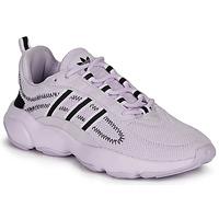 Schuhe Damen Sneaker Low adidas Originals HAIWEE W Malvenfarben