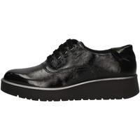Schuhe Damen Derby-Schuhe IgI&CO 41685/00 BLACK