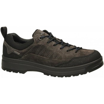 Schuhe Herren Wanderschuhe IgI&CO UKRGT 41238 - SC.BRU/GOM/TELA antracite