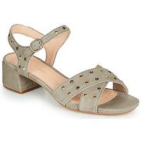 Schuhe Damen Sandalen / Sandaletten Clarks SHEER35 STRAP Maulwurf / Clou
