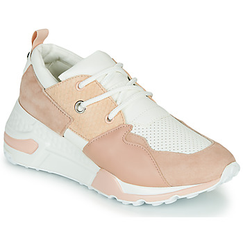 Schuhe Damen Sneaker Low Steve Madden CLIFF Rose