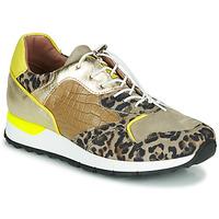 Schuhe Damen Sneaker Low Mjus CAST Kaki / Leopard