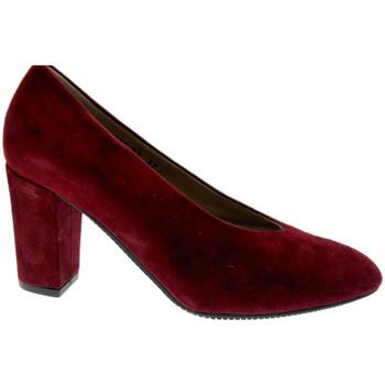 Schuhe Damen Pumps Calzaturificio Loren LO60887bo nero