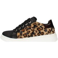 Schuhe Mädchen Sneaker Low Asso AG-3300 BLACK