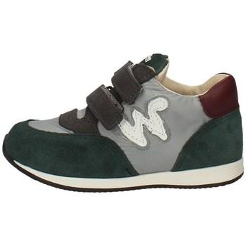 Schuhe Jungen Sneaker Low Balducci CSP3703 Multicolor