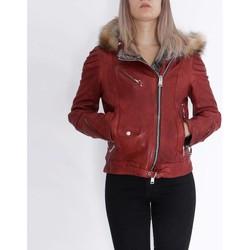 Kleidung Damen Lederjacken / Kunstlederjacken Delan V402 Rot