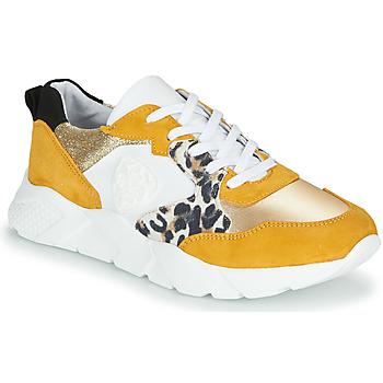 Schuhe Damen Sneaker Low Philippe Morvan VIRGIL Gelb / Weiss