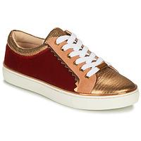 Schuhe Damen Sneaker Low André LA FUNAMBULE Bronze