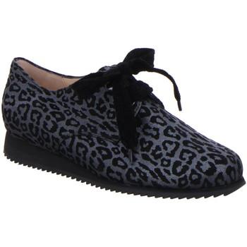 Schuhe Damen Derby-Schuhe Hassia Schnuerschuhe Piacenza 8-301664-6200 8-301664-6200 grau