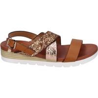 Schuhe Damen Sandalen / Sandaletten Rocco Barocco BP202 braun