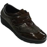 Schuhe Damen Slipper 48 Horas Damenschuhe mit Klettverschluss und Lycr Braun