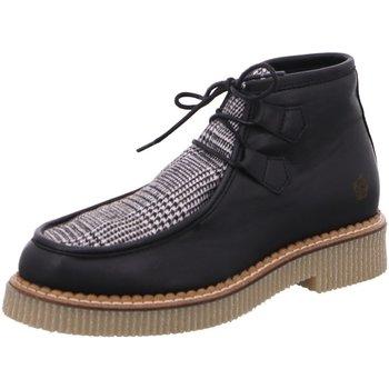 Schuhe Damen Boots Apple Of Eden Schnuerschuhe Dany 1 schwarz