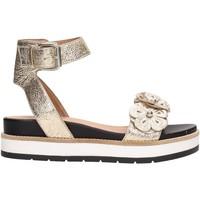 Schuhe Damen Sandalen / Sandaletten Janet Sport 41811 Multicolore