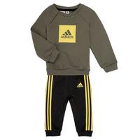 Kleidung Jungen Kleider & Outfits adidas Performance MERLO Grau / Gelb