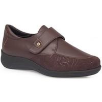 Schuhe Damen Derby-Schuhe & Richelieu Calzamedi DIABETIC ELASTIC  SCHUHE BROWN