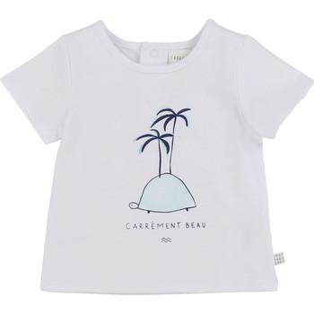 Kleidung Jungen T-Shirts Carrément Beau MARTINEZ Weiss