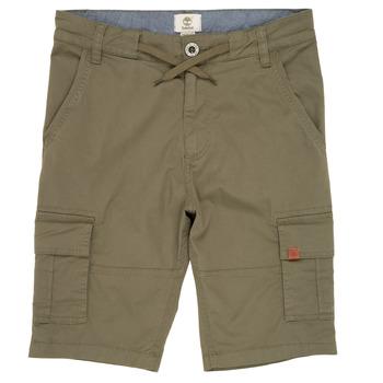 Kleidung Jungen Shorts / Bermudas Timberland TAO Grün