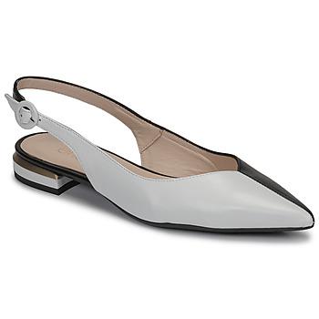 Schuhe Damen Ballerinas Fericelli MANU Schwarz / Schattengrau / Weiss