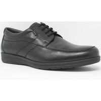 Schuhe Herren Derby-Schuhe Baerchi 3802 schwarz Schwarz