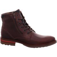 Schuhe Herren Boots Bullboxer Must-Haves 791-K8-5479C braun