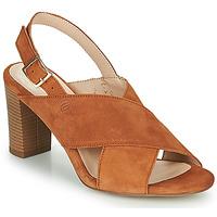 Schuhe Damen Sandalen / Sandaletten Betty London MARIPOL Cognac