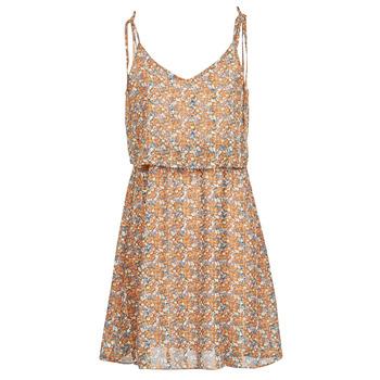 Kleidung Damen Kurze Kleider Betty London MINDI Multifarben