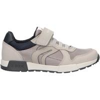 Schuhe Jungen Multisportschuhe Geox J846NC 014AF J ALFIER Gris