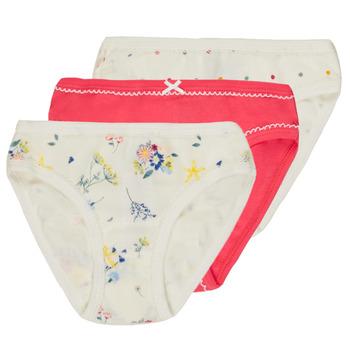Unterwäsche Mädchen Damenslips Petit Bateau 54465 Multicolor