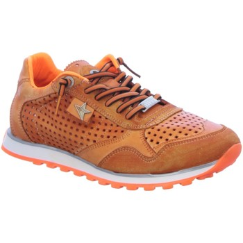 Schuhe Herren Sneaker Low Cetti C848 orange