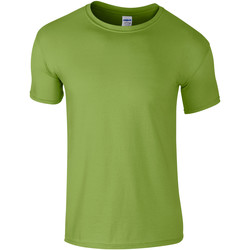 Kleidung Herren T-Shirts Gildan Soft-Style Kiwi