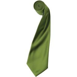 Kleidung Herren Krawatte und Accessoires Premier PR750 Oase