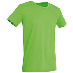 Kleidung Herren T-Shirts Stedman Stars Stars Blitz Grün