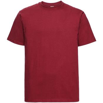 Kleidung Herren T-Shirts Russell 215M Rot