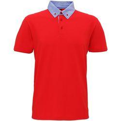 Kleidung Herren Polohemden Asquith & Fox Chambray Rot/ Denim