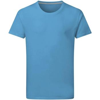 Kleidung Herren T-Shirts Sg Perfect Türkis