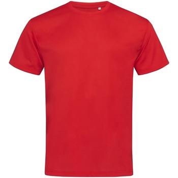 Kleidung Herren T-Shirts Stedman  Purpurrot