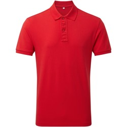 Kleidung Herren Polohemden Asquith & Fox Infinity Rot