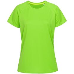 Kleidung Damen T-Shirts Stedman  Grün
